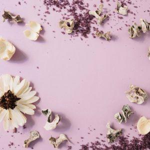 les fleurs âges -tarifs -massage